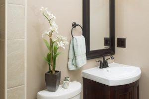esta-querendo-saber-como-decorar-seu-banheiro